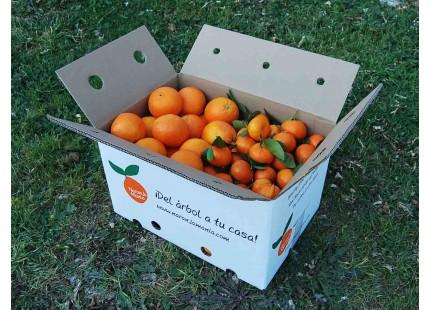 Mixtes boîtes 20 kg: (13kg) Orange Navelina á jus + (7kg) Mandarine Clemenules