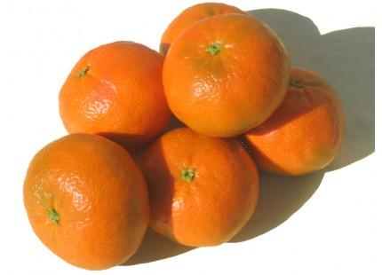 Mandarine tardive, cagette de 5 kg.