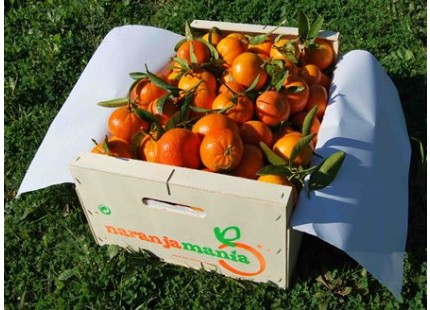 Box Mandarine Mini 9 kg