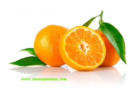 Mandarina Clemenvilla Valenciana 5kg ✔