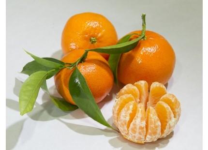 Mandarine tardive, cagette de  14 kg.