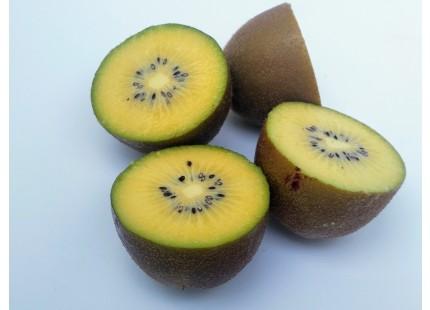 Kiwi Jaune 5kg