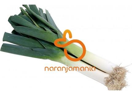 carotte 1kg