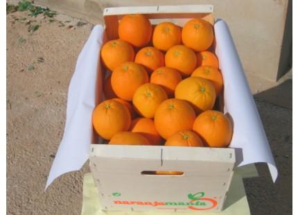 Caja Mixta 14kg de Naranja Zumo (9kg) + Tomate Valenciano (5kg)✔