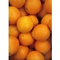Jus d'Orange 1kg ✔