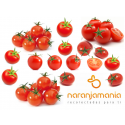 Tomate Cherry 500GR