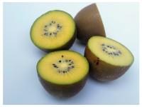 Kiwi Jaune 1kg
