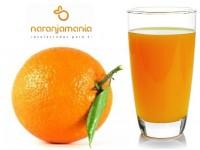 Orange pour machine à jus C6-7 19kg