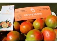 Boite mixte (10 kg) d'orange de table (de 8 kg) + Courgettes (2 kg)